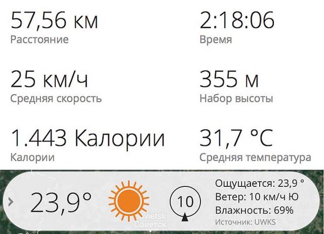Тренировка TREK шоссе 24.08.16 общее