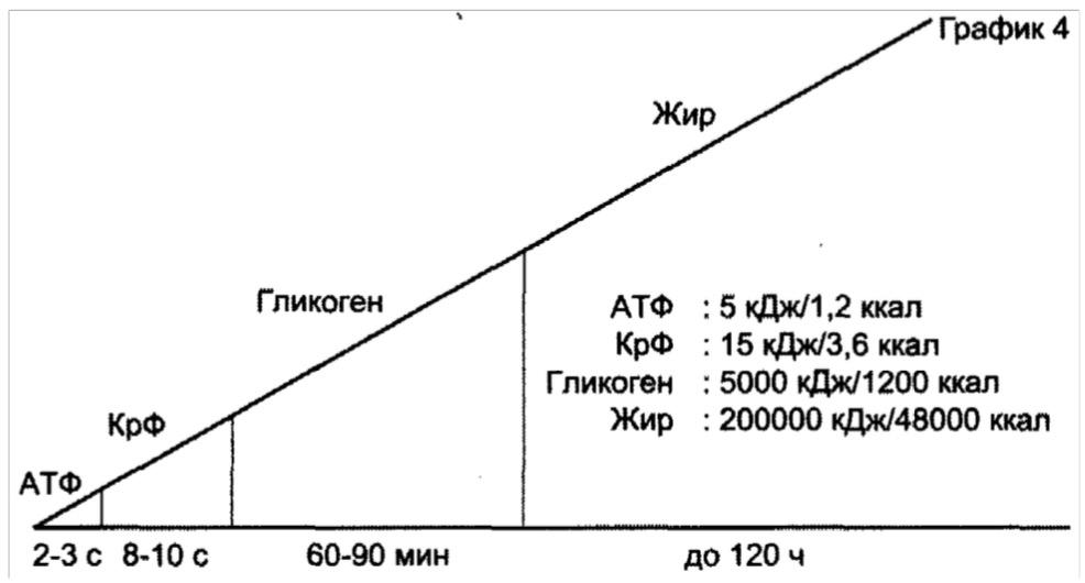 График распределения расхода энергии в организме человека АТФ, КРФ, Гликоген, Жир - из книги Петера Янсена ЧСС, Лактат и Тренировки на выносливость. Судя по этому графику быстро худеть не опасно.